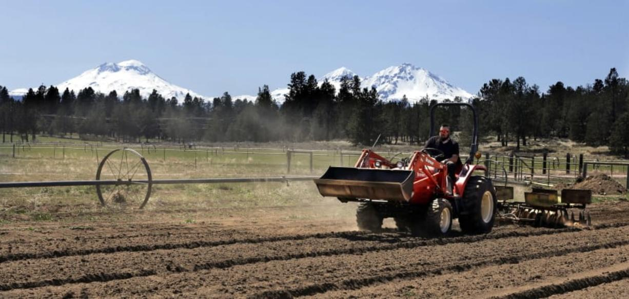 Trevor Eubanks, plant manager for Big Top Farms, readies a field for another hemp crop, April 23, 2018, near Sisters, Ore. (Photos by Don Ryan/Associated Press files)