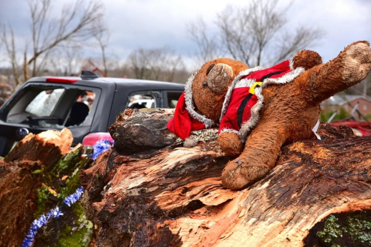 This Santa bear came to rest in the splinter of a tree in the Locust Grove area just off Highway 70 west of Cookeville, Tenn.,Tuesday, March 3, 2020. (Jack McNeely/The Herald-Citizen via AP) (teresa m.