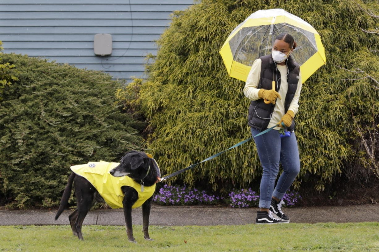 Dog walker Imaj Royster, wearing a protective mask against the coronavirus outbreak, looks back as her charge Hazard is distracted during a stroll in the rain Monday, March 30, 2020, in Seattle.