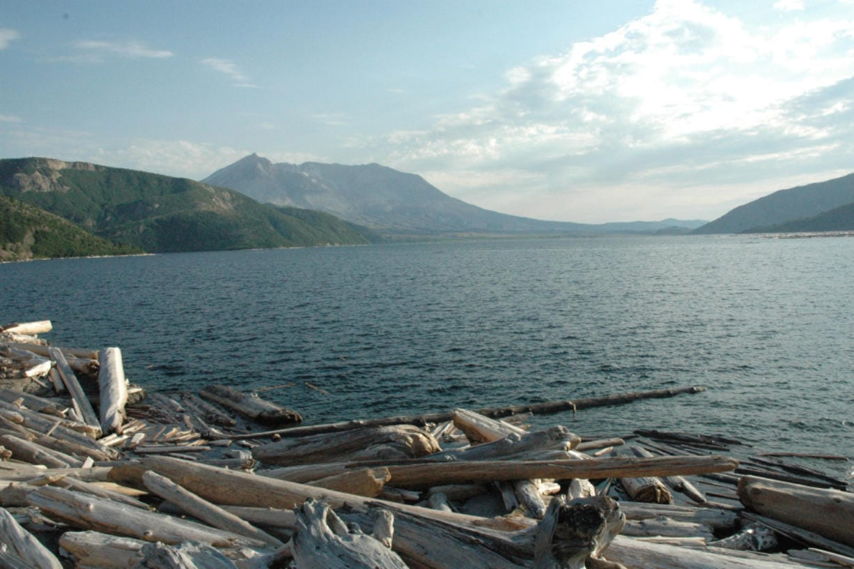 Mount St. Helens is seen from the far shore of Spirit Lake.