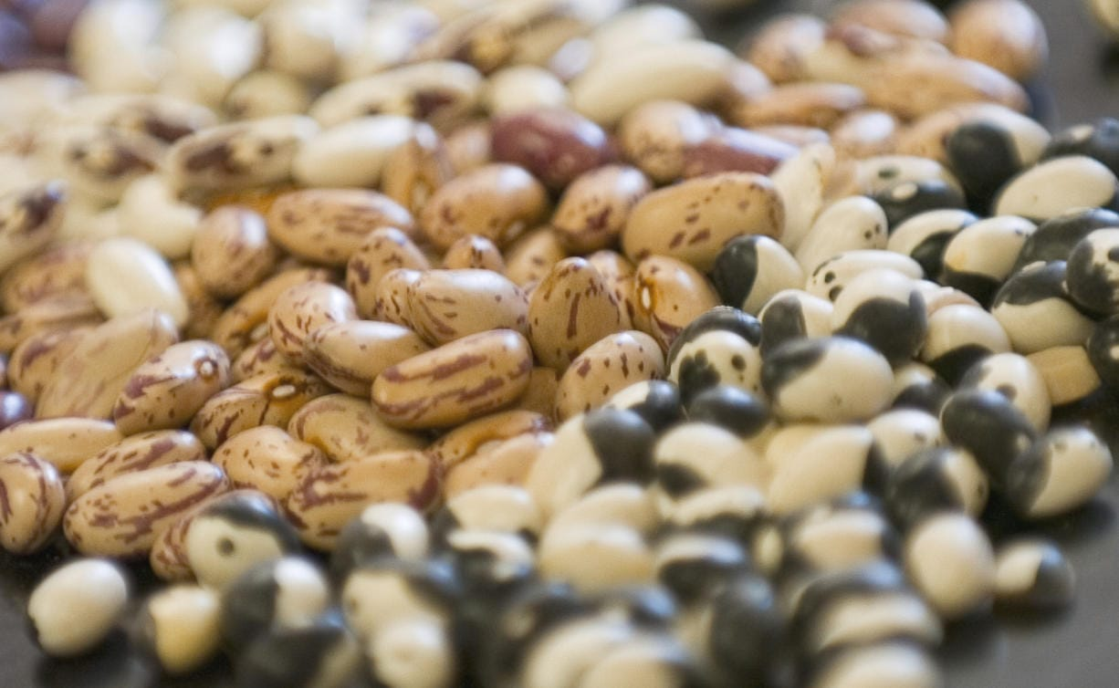 Producers have seen a surge in demand for dry beans as consumers stock up on shelf-stable products.