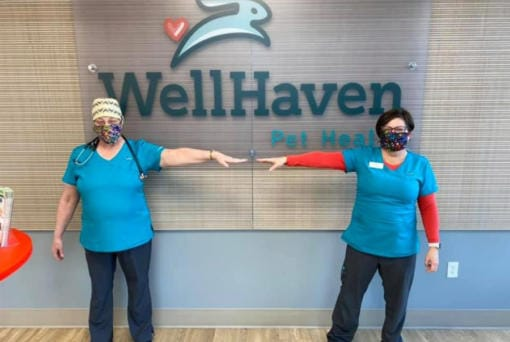 Two employees at WellHaven Pet Health demonstrate social distancing measures while wearing new fabric masks manufactured by Sweet Spot Skirts. (Courtesy of WellHaven Pet Health)