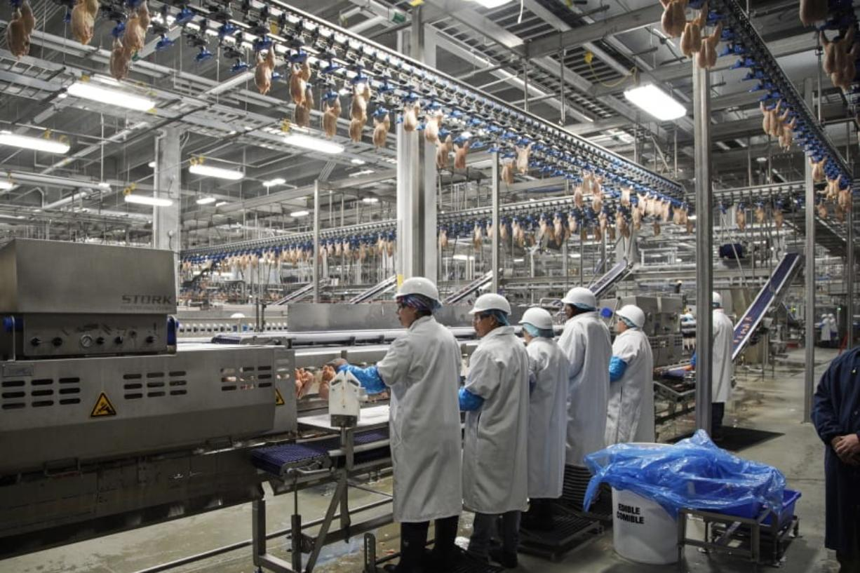 FILE - In this Dec. 12, 2019, file photo workers process chickens at the Lincoln Premium Poultry plant, Costco Wholesale's dedicated poultry supplier, in Fremont, Neb. On Friday, Jan. 17, 2020, the Federal Reserve reports on U.S. industrial production for December.
