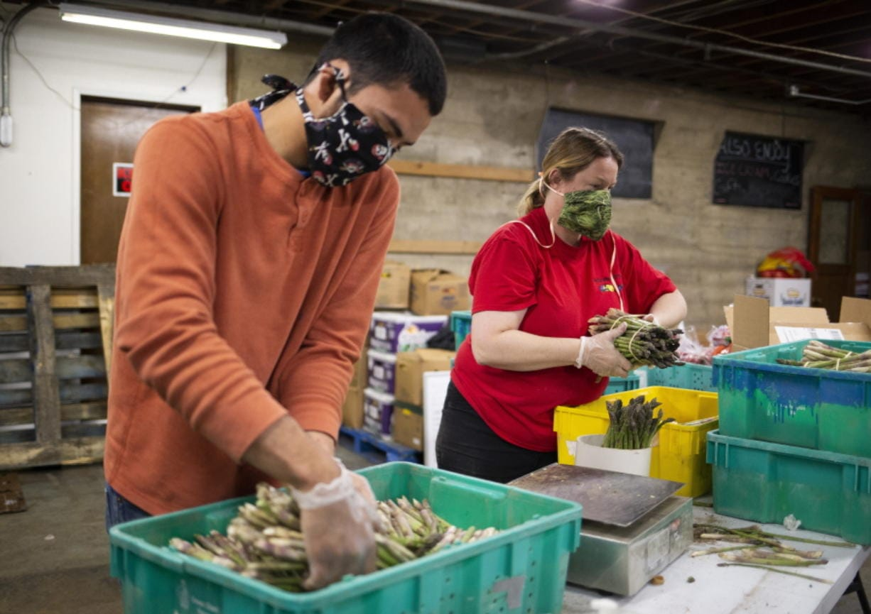 FILE - In this April 10, 2020 file photo, Missael Lopez, left, and Laura McIlrath Riel bundle asparagus at McIlrath Family Farm stand in Yakima, Wash., during the coronavirus outbreak.