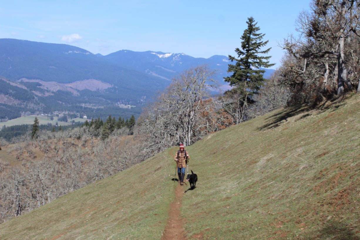 After months of being on lockdown, recreationists can finally return to most of their favorite trails in the Columbia River Gorge, and the Gifford Pinchot National Forest. However, a few of the more popular and crowded trailheads remain closed.
