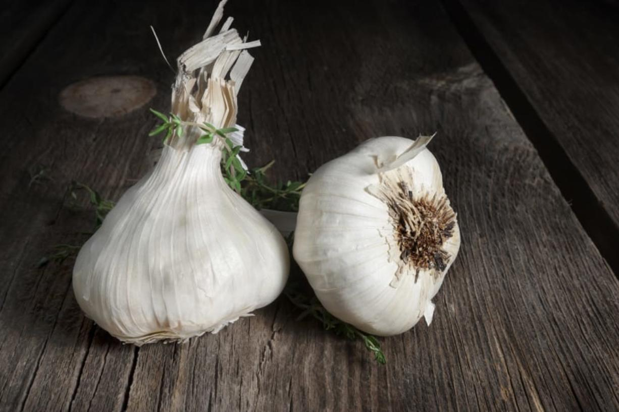 If stored properly, garlic cloves can last for years, says Enon Valley Garlic's Ron Stidmon.