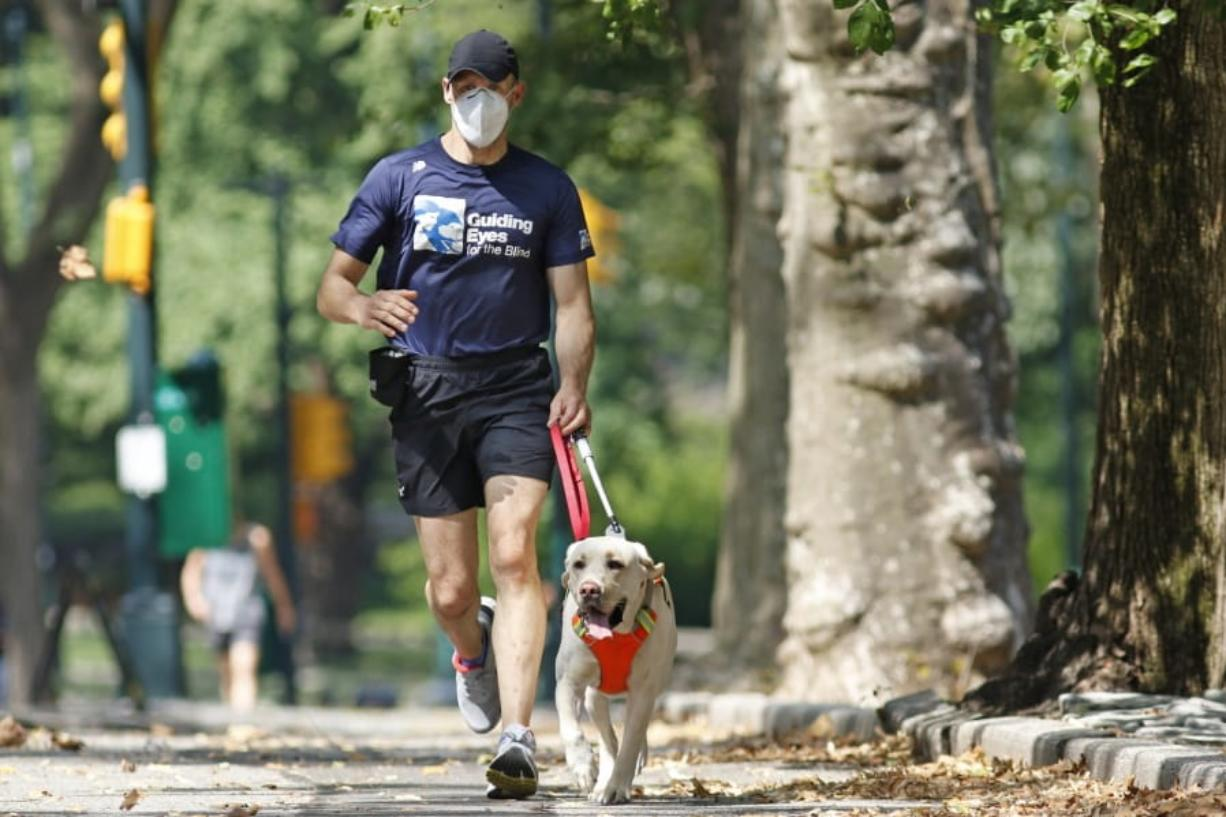 Thomas Panek runs with his running guide, Blaze, a Labrador retriever, Thursday, July 23, 2020, in Central Park in New York. Panek, a blind runner with a wall full of ribbons from marathons he ran with a human guide, developed a canine running guide training program five years ago after he became president and CEO of Guiding Eyes for the Blind in suburban New York.
