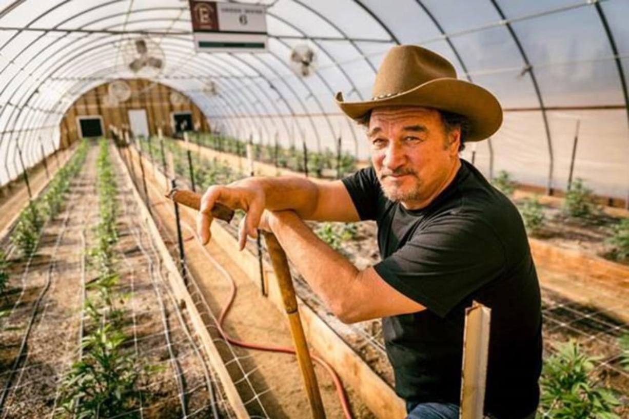 """Jim Belushi showcases his Oregon cannabis farm and products on his new TV show, """"Growing Belushi,"""" which premiered Wednesday."""