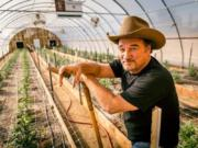"Jim Belushi showcases his Oregon cannabis farm and products on his new TV show, ""Growing Belushi,"" which premiered Wednesday."