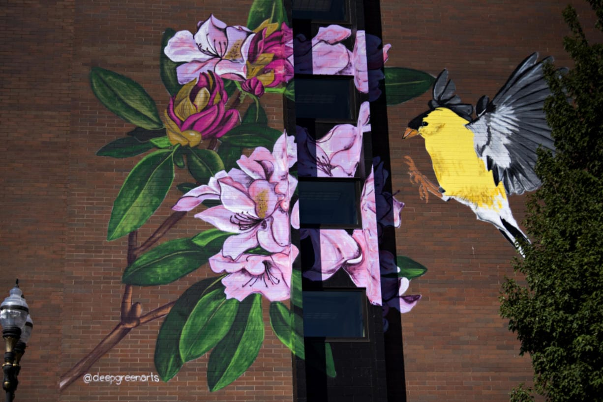 A colorful mural brightens up the side of Van Vista Plaza Assisted Living on Tuesday in downtown Vancouver. The new mural on the east side of the building depicts the state bird, the American Goldfinch, landing on the state flower, the Pacific rhododendron.