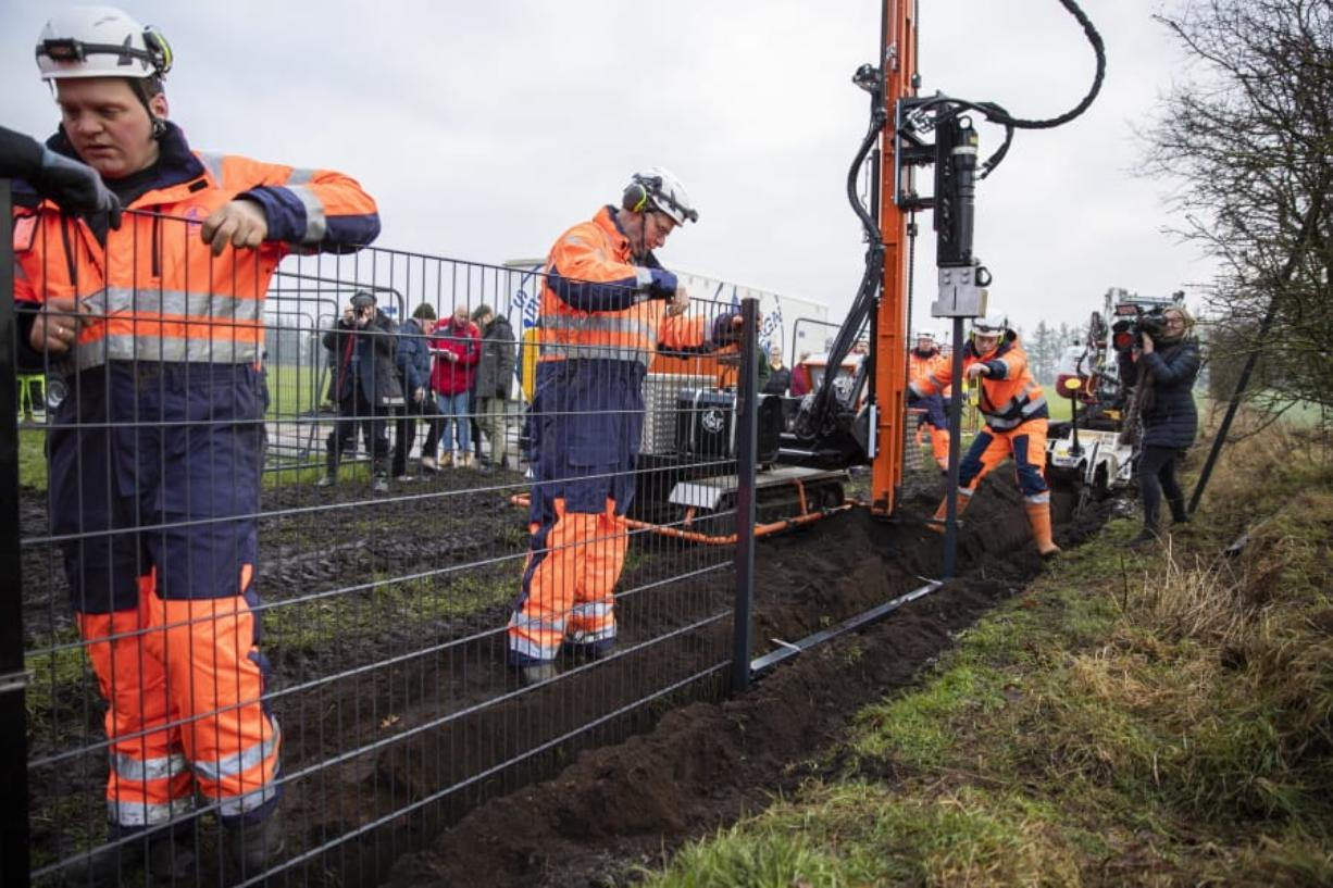 FILE - In this Monday Jan. 28, 2019 file photo, workers erect a fence along the Denmark Germany border at Padborg, Denmark. Officials say the number of wild boars in Denmark has fallen since a 70-kilometer (43.4-mile) fence was erected along the German border to protect the valuable Danish pork industry. The fence was put up last year in an attempt to prevent wild swine crossing from Germany and breeding with farm pigs or possibly passing disease.