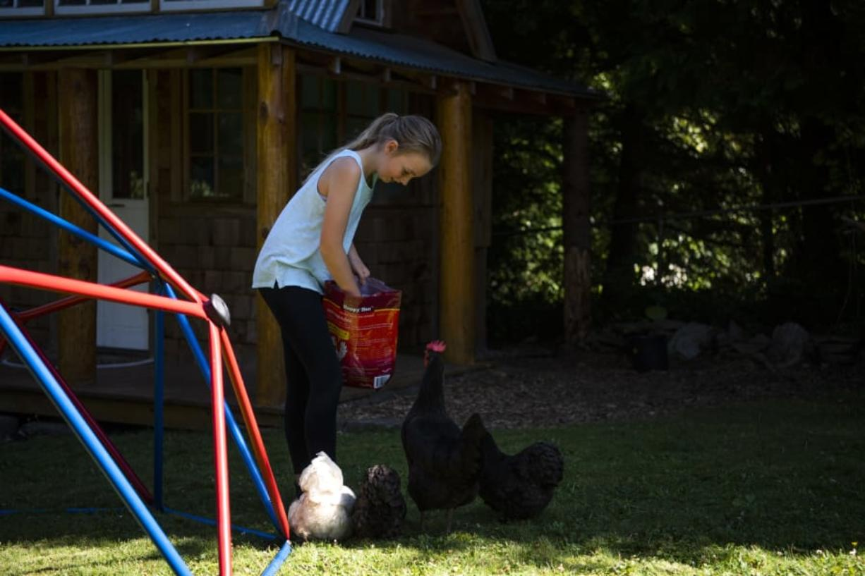 Amanda Livingston, 11, feeds the family's chickens outside their home. Livingston said she's noticed that every family has different comfort levels with social distancing.