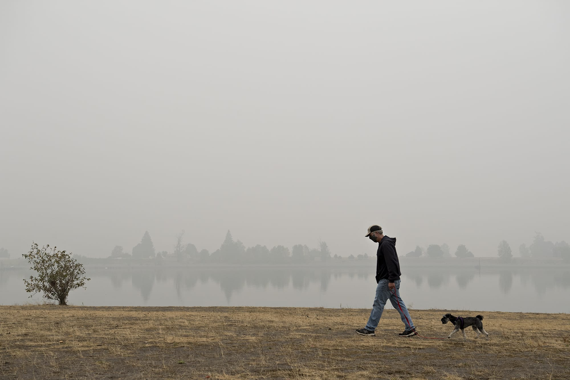 """Frank Schmit of Vancouver wears a mask while taking his dog, Ripley, a mini schnauzer, for a stroll as thick wildfire smoke obscures the visibility of trees across the water at Frenchman's Bar Regional Park on Monday morning, Sept. 14, 2020. Schmit said the fires and the smoke are just the latest in a list of unusual events that have happened in 2020. """"It's been a hell of a year,"""" he said."""