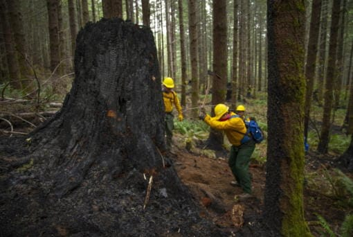 A fire crew from the Oregon Air National Guard works to dig out hot spots on the fire lines of the Holiday Farm Fire, east of Springfield, Ore., Monday Sept. 21, 2020.