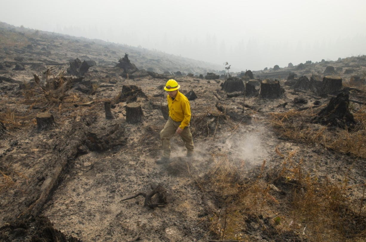 Marcus Kauffman with the Oregon Department of Forestry, walks through a burned out area of the Holiday Farm Fire along the southwest edge of the burn area above Deerhorn, Ore., Thursday, Sept. 17, 2020.