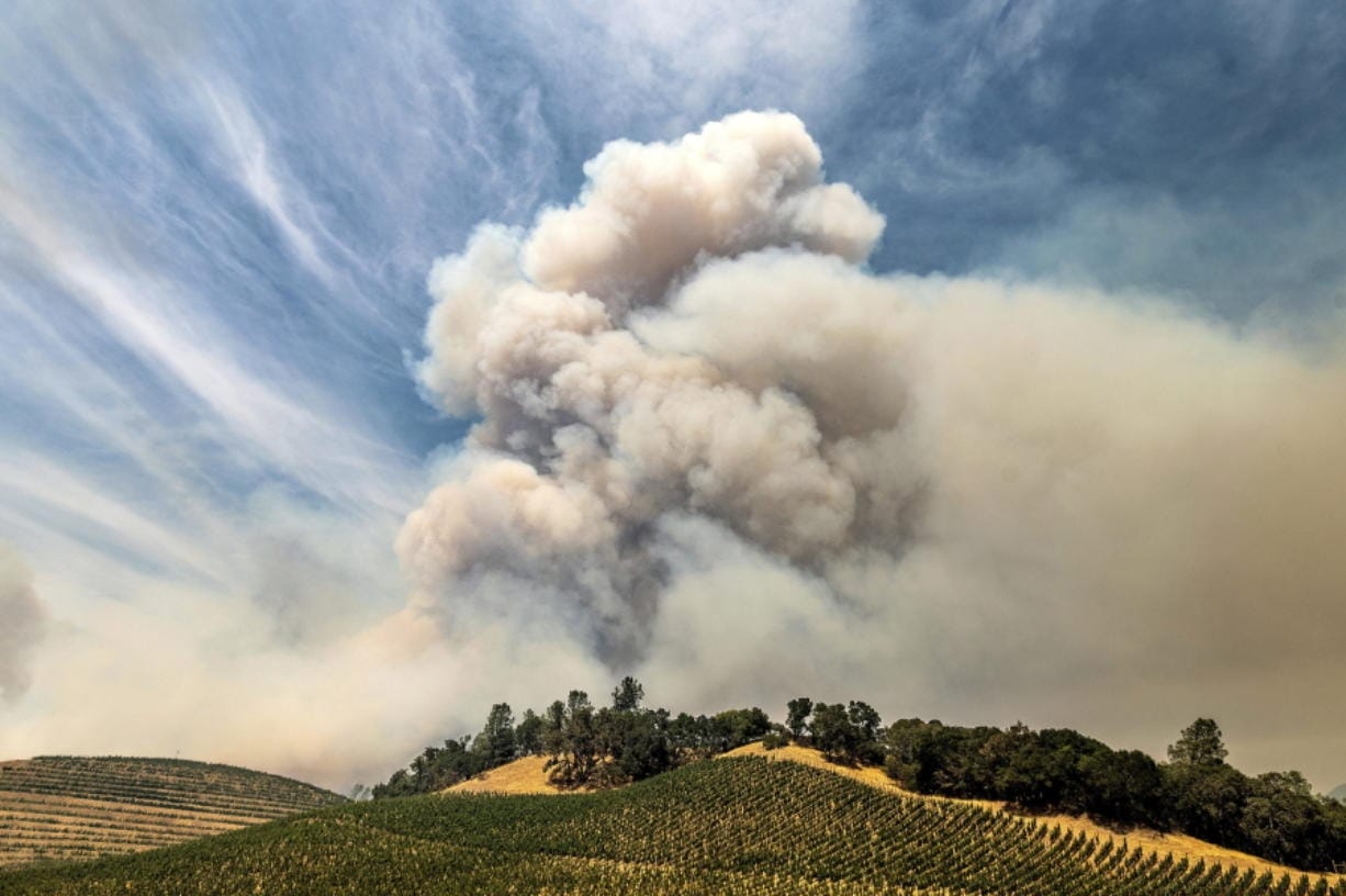 FILE - In this Aug. 18, 2020, file photo, a plume rises over a vineyard in unincorporated Napa County, Calif., as the Hennessey Fire burns. Smoke from the West Coast wildfires has tainted grapes in some of the nation's most celebrated wine regions. The resulting ashy flavor could spell disaster for the 2020 vintage.