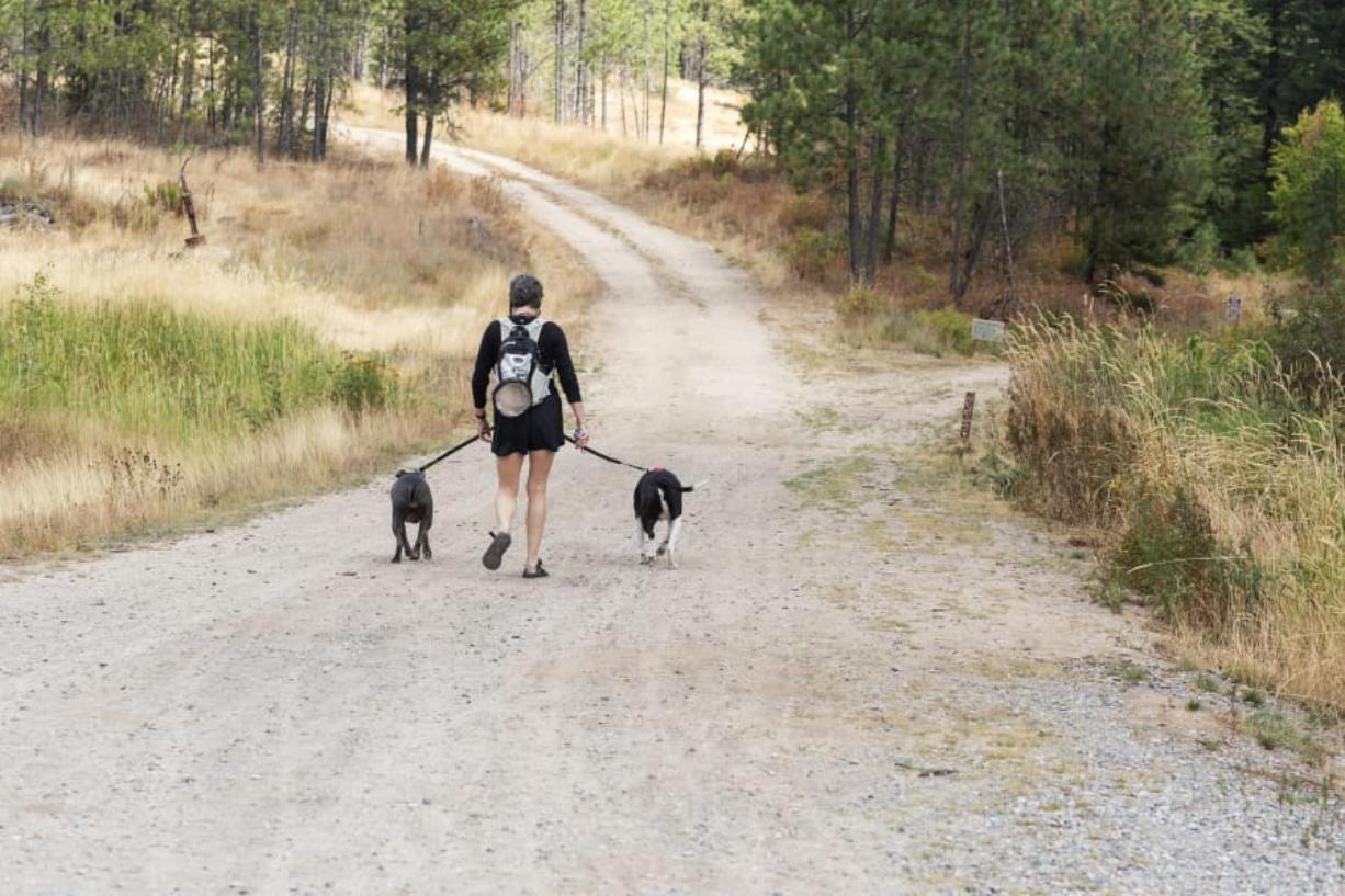 Kate Rau heads down the trail with Mac and Ivy, her two American Staffordshire terriers.