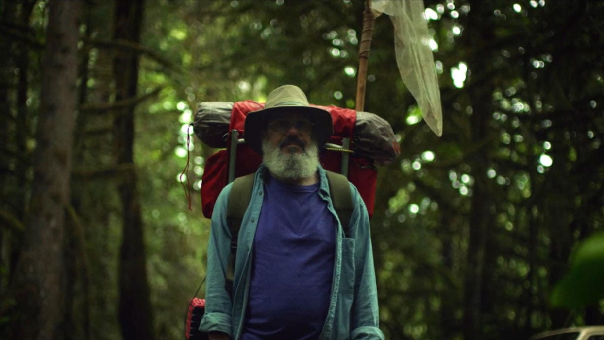 """In """"The Dark Divide,"""" David Cross stars as Southwest Washington naturalist Robert Michael Pyle as he takes a journey across the Gifford Pinchot National Forest."""