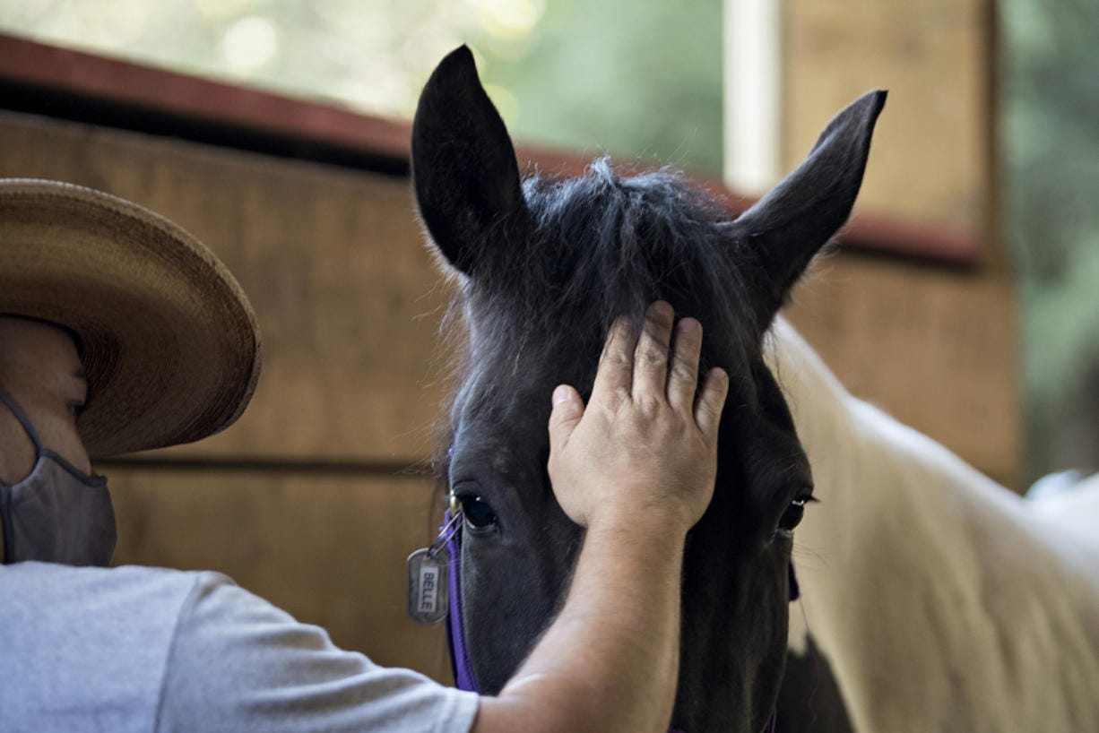 U.S. Army combat veteran Jon Steinmann spends a quiet moment bonding with Windhaven Therapeutic Riding horse Belle in La Center.