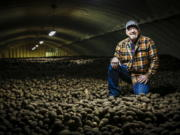 Potato farmer Steve Streich stands on a mound of potatoes 20 feet deep inside one of his climate-controlled warehouses which are designed to keep millions of pounds of product fresh and cool in Creston, Mont., on Sept. 25.