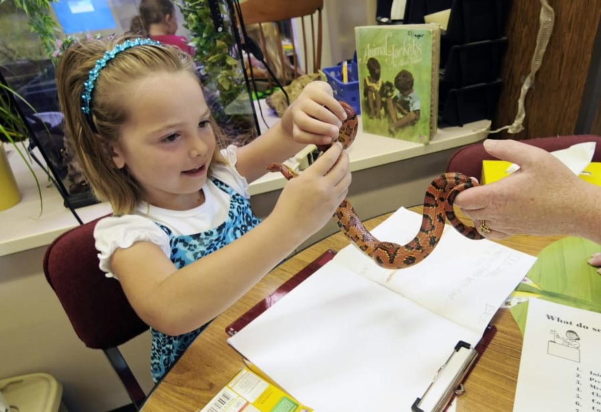 FILE - In this Sept. 11, 2012, file photo, Hailey Fink gets acquainted with a corn snake in the first grade classroom of Dawn Slinger in Farmington, Minn. Corn snakes are great for beginners. Native to the U.S., they're suited to our environment.
