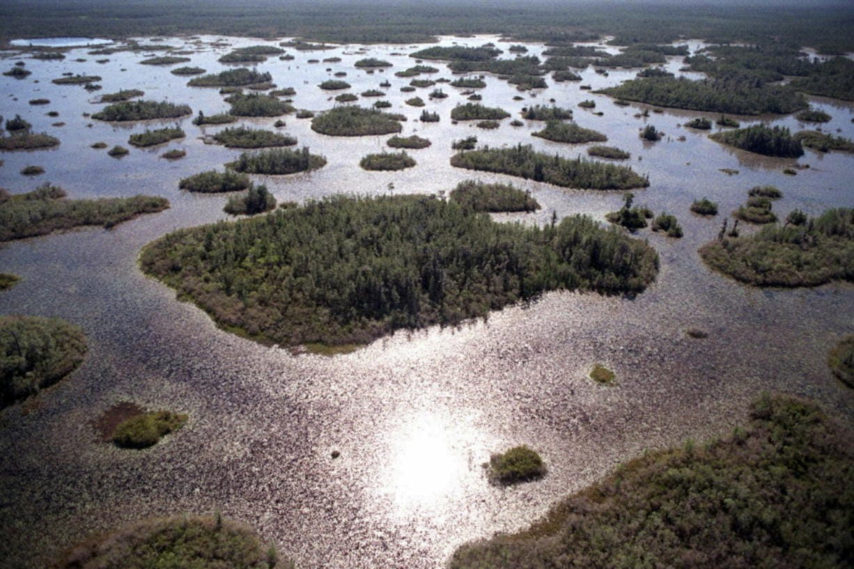 FILE-In this Thursday, April 3, 1997 file photo, the Okefenokee National Wildlife Refuge in southeast Ga., is is seen. A mining company said Tuesday it plans to dig for minerals without a federal permit at the edge of the vast wildlife refuge in the Okefenokee Swamp, a big step for a once-embattled project that's now benefitting from the Trump administration's rollback of environmental rules.