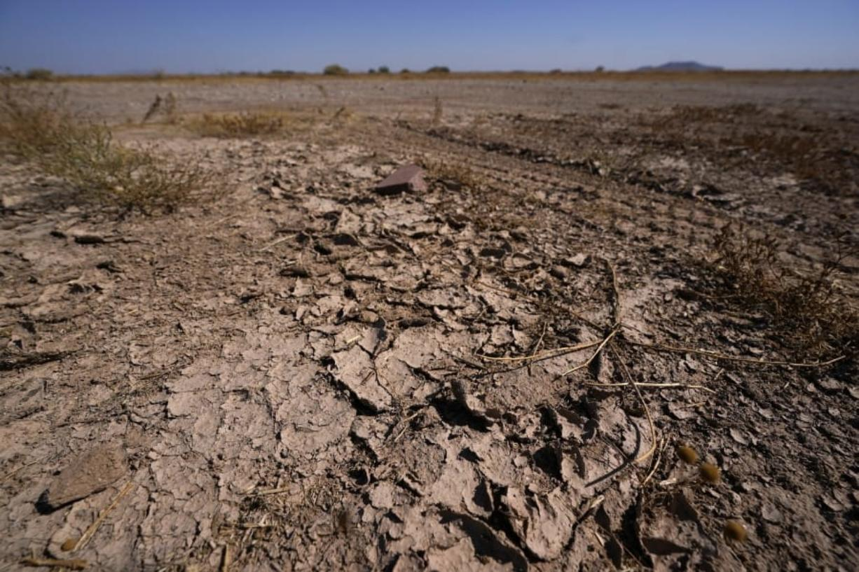 FILE - In this Wednesday, Sept. 30, 2020 file photo, dry desert soil cracks due to the lack of monsoon rainfall in Maricopa, Ariz. In a report released on Thursday, Oct. 15, 2020, National Oceanic and Atmospheric Administration forecasters see a dry winter for all of the south from coast-to-coast and say that could worsen an already bad drought. (AP Photo/Ross D.