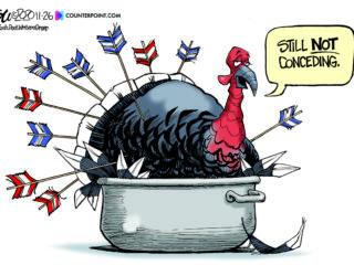 Editorial Cartoons, Nov. 22-28