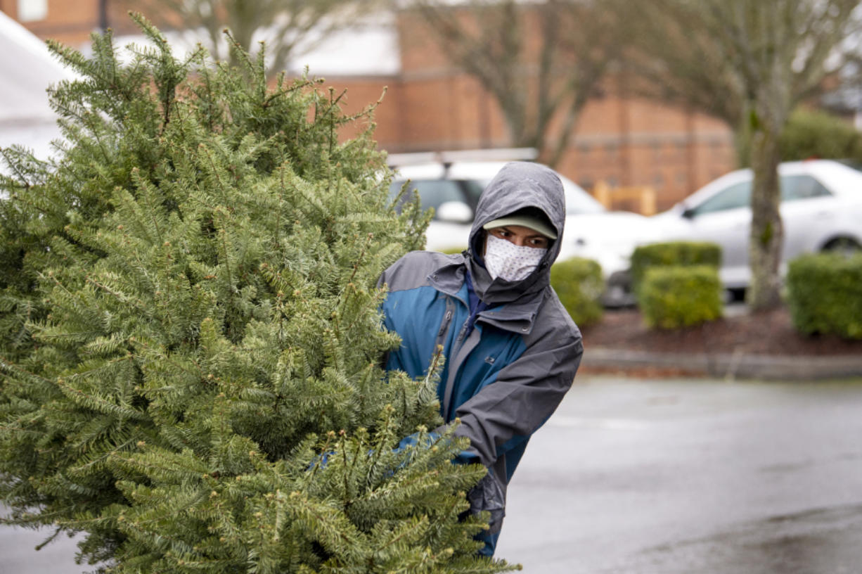 Boy Scout Troop 479 member Parker Zaemann, a Seton Catholic freshman, hauls a tree from the back of a pickup truck into a dumpster during the Boy Scouts annual tree pickup event at Thomas Jefferson Middle School.