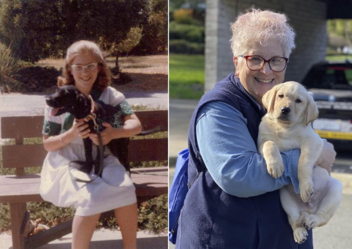 In the photo on the left, a 10-year-old Marybeth Hearn holds her first guide dog in training, Letta, in August 1962. Over 50 years later, in the photo on the right, Hearn holds her 55th puppy raised for Guide Dogs for the Blind, in Lemoore, Calif. For over five decades, the newly retired high school teacher has volunteered as a puppy raiser for the nonprofit, training 56 dogs on her own and 170 with her students in a local program she started.