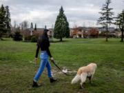 Novia Liu walks her dog, Snicker, at Medina Park on Feb. 5, 2020.