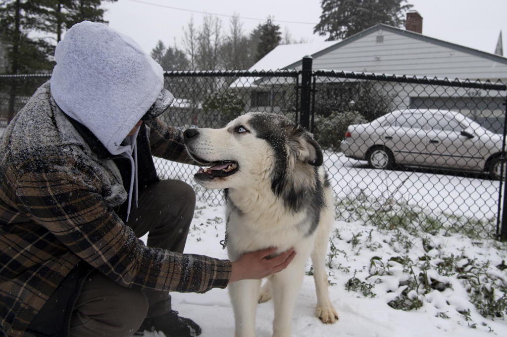 Edgar Lopez pets his dog, Asher, on Friday, February 12, in the Minnehaha neighborhood. Snow continued to accumulate Friday morning as the winter storm persisted.
