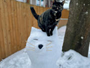 SHUMWAY: Cat owner Chelsea Pipek made a snow cat and posed her cat Taco on top.