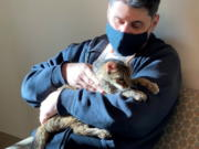 Brandy, a brown tabby cat, was reunited  with her owner, Charles after she went astray for 15 years.