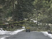 In this photo provided by Chris Moore, a downed tree tangled up with power lines blocks the road leading out of a neighborhood in Lake Oswego, Ore., on Wednesday, Feb. 17, 2021. More than 150,000 customers remain without power in the greater Portland, Ore., region nearly a week after a massive ice storm downed power lines and sent trees crashing onto houses and blocked roads.