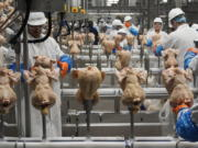 FILE - In this Dec. 12, 2019, file photo workers process chickens at the Lincoln Premium Poultry plant, Costco Wholesale's dedicated poultry supplier, in Fremont, Neb. U.S. wholesale prices rose 0.3% in August 2020, just half the July gain, as food and energy prices decline. The Labor Department said Thursday, Sept. 10 that the August advance in the producer price index -- which measures inflation before it reaches consumers -- followed a 0.6% surge in June which was the biggest monthly gain since October 2018.