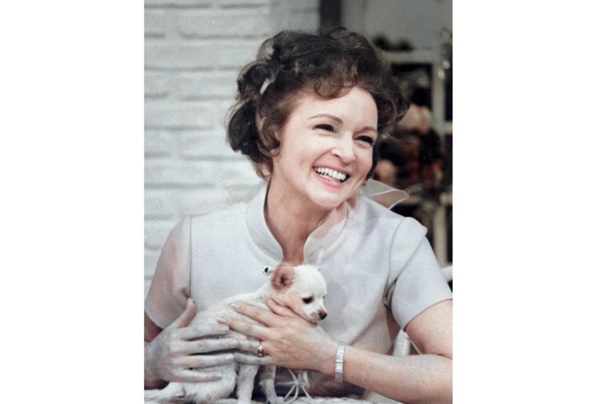 """This colorized image released by Margate And Chandler, Inc. shows actress and animal activist Betty White with a puppy from her 1970s series """"The Pet Set."""" The restored 39-episode series, renamed """"Betty White's Pet Set,"""" features celebrity guests Mary Tyler Moore, Carol Burnett, Burt Reynolds, James Brolin and Della Reese. (Margate And Chandler, Inc."""