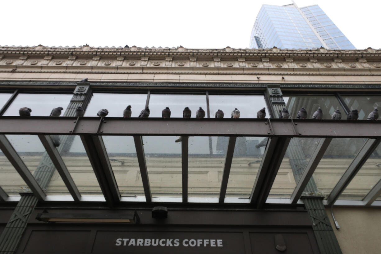 In need of a dopio macchiato? Pigeons take to the awning above the Starbucks across from the Pike Place Market in Seattle on February 3, 2021.