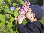 Finding children who are experiencing smell disturbances is tricky. Many with COVID are asymptomatic, and others may be too young to verbalize what they are experiencing.