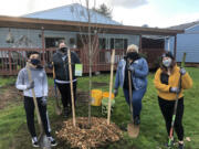 BAGLEY DOWNS: Vancouver Parks and Recreation and the city's Department of Public Works Urban Forestry program celebrated Black History Month with a tree planting at Bagley Community Park. On Feb.