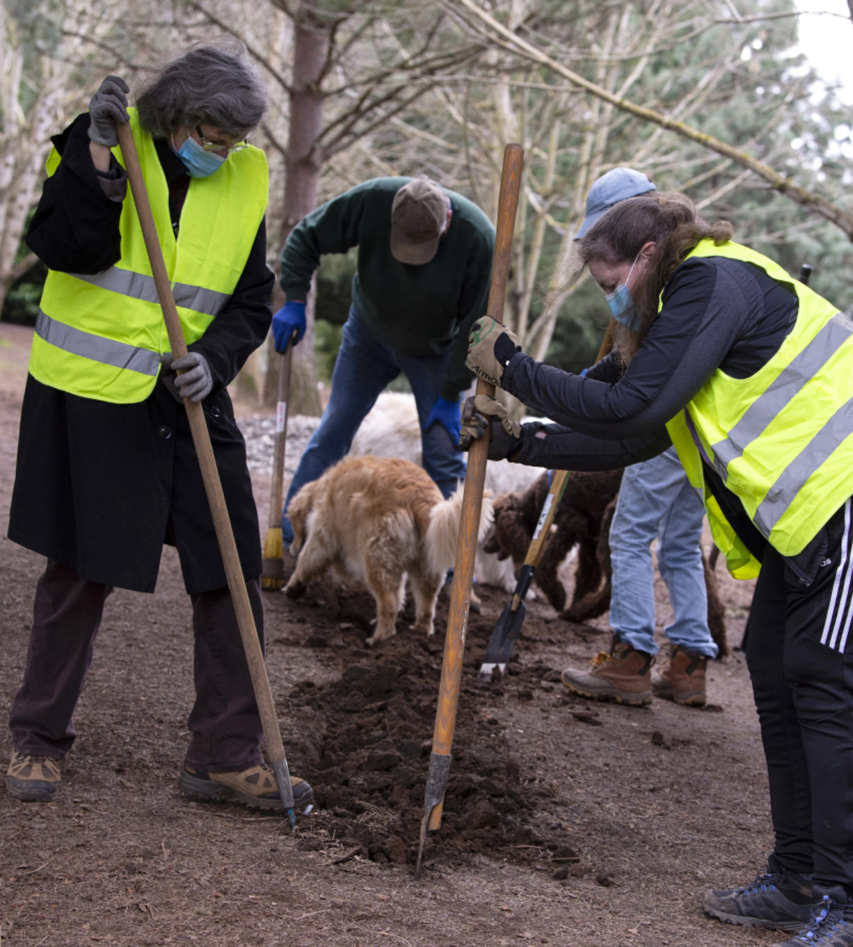 Volunteer Mary Carling, left, and former DOGPAW president Eileen Cervantes help dig a trench on Saturday at Ike Memorial Dog Park in Vancouver. DOGPAW held its volunteer cleanup Saturday, as more than a dozen volunteers dug a trench to help filter water away from some of the muddier spots of the park.