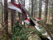 Two people suffered only minor injuries Monday when their small plane went down in a heavily wooded area near Gumboot Mountain on the Clark/Skamania County border.