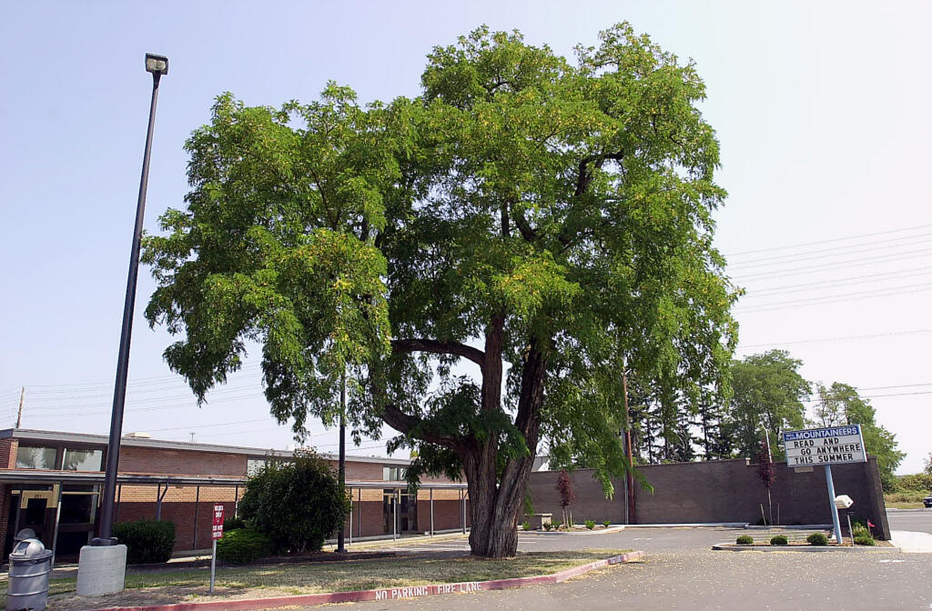 Mill Plain Elementary is slated to be replaced.