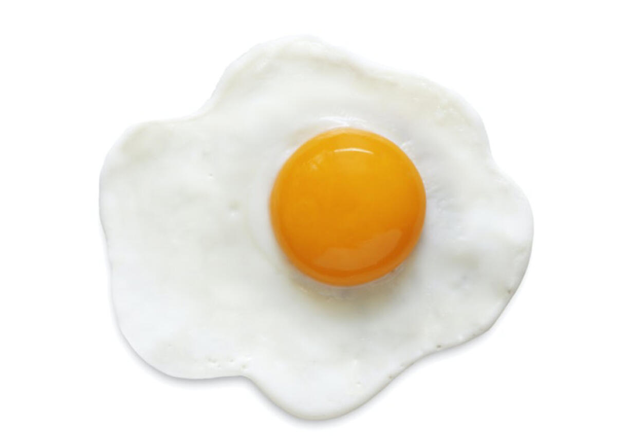 Have you ever found anything as weird as a fried egg in a book? It has happened!