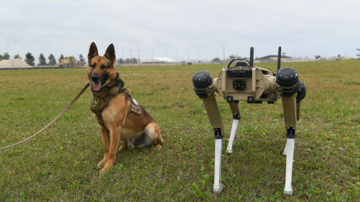 Sunny, a 325th Security Forces Squadron military working dog, poses March 24 next to a quad-legged unmanned ground vehicle at Tyndall Air Force Base, Fla. (Airman 1st Class Anabel Del Valle/U.S.