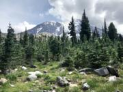 Mount Adams as seen from the junction where the Divide Camp Trail meets the Pacific Crest Trail.