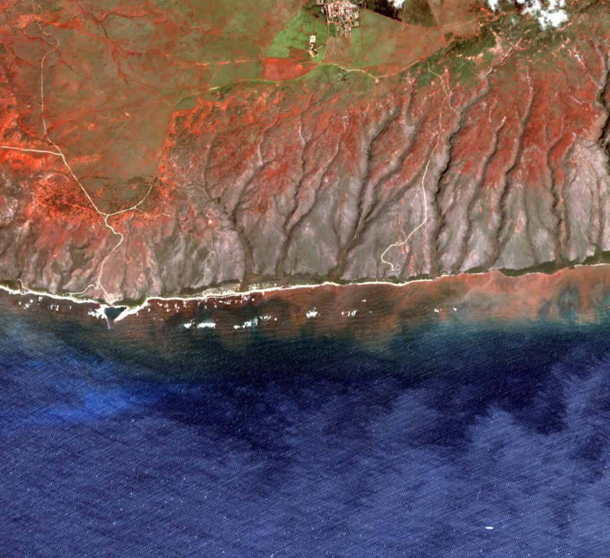 In this 2020 satellite image provided by the Arizona State University's Center for Global Discovery and Conservation Science, Allen Coral Atlas, runoff from the island of Molokai in Hawaii flows into the ocean. Recent flooding in Hawaii caused widespread and obvious damage. But extreme regional rain events that are predicted to become more common with global warming do not only wreak havoc on land, the runoff from these increasingly severe storms is also threatening Hawaii's coral reefs.