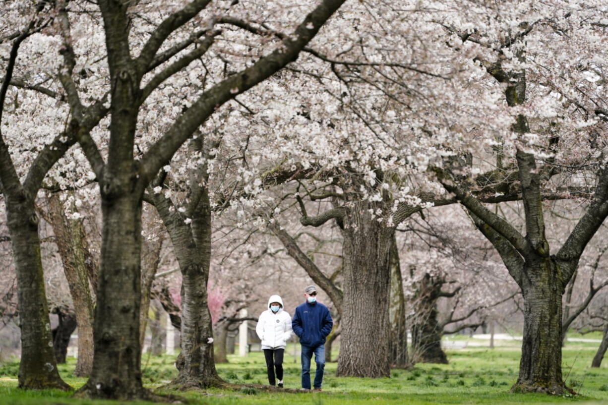 FILE - In this April 2, 2021, file photo, Janet Nemec, left, celebrates receiving her second vaccination dose with her husband Dale with a walk beneath blossoming trees along Kelly Drive in Philadelphia. Nearly half of new coronavirus infections nationwide are in just five states, including Pennsylvania - a situation that puts pressure on the federal government to consider changing how it distributes vaccines by sending more doses to hot spots.