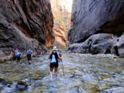 Zion National Park in Utah is expected to be a popular destination on Memorial Day weekend. Above, the Virgin River snakes through the Narrows in the park in 2019.