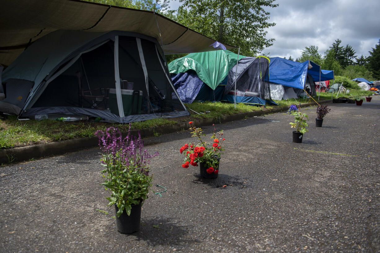 Springtime flowers brighten the day of residents at a homeless encampment In northeast Vancouver on Tuesday morning, May 25, 2021.